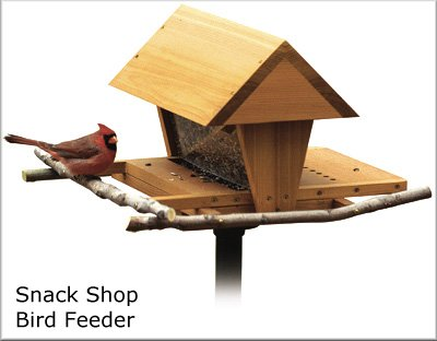 splendid plan wood squirrel bird large feeders birdfeeder proof feeder elegant plans building
