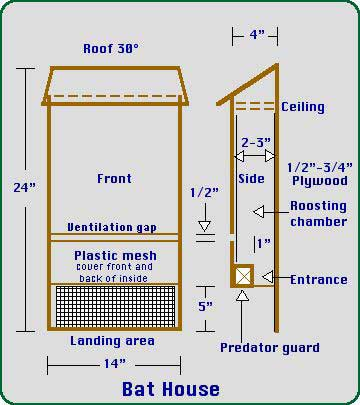Plan for a bat house